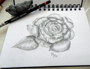 Rose drawing in my sketch book